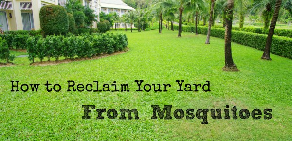 How-to-get-rid-of-mosquitoes-in-yard-600x290